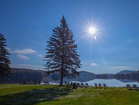vue lac sapin automne